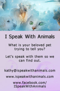 I Speak with Animals